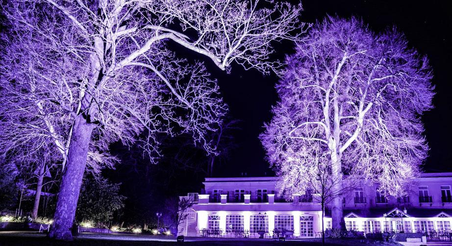 Tree-Lighting-Hire-Berkshire